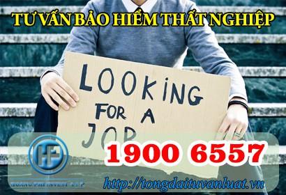 Tư vấn bảo hiểm thất nghiệp trực tuyến qua Tổng đài 1900 6557