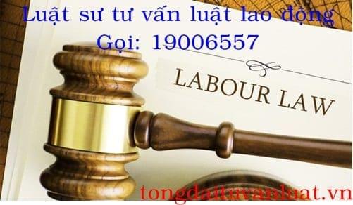 Luật sư tư vấn pháp luật lao động miễn phí