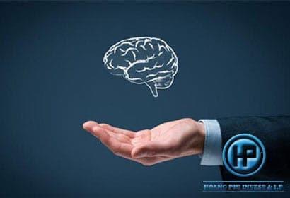 giai đoạn cấp văn bằng bảo hộ đăng ký sở hữu trí tuệ
